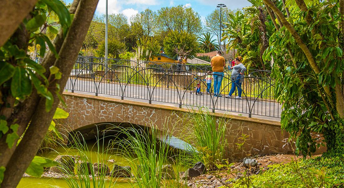 Familia con hijo mirando el lago del Parque de La Vega desde el puente en San Cristobal de La Laguna