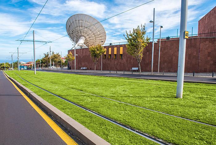 Vias de cesped del tranvia metropolitano de Tenerife junto al Museo del Cosmos y de la Ciencias