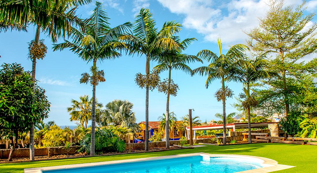 Vista de palmeras y cesped artificial alrededor de una piscina en una finca privada