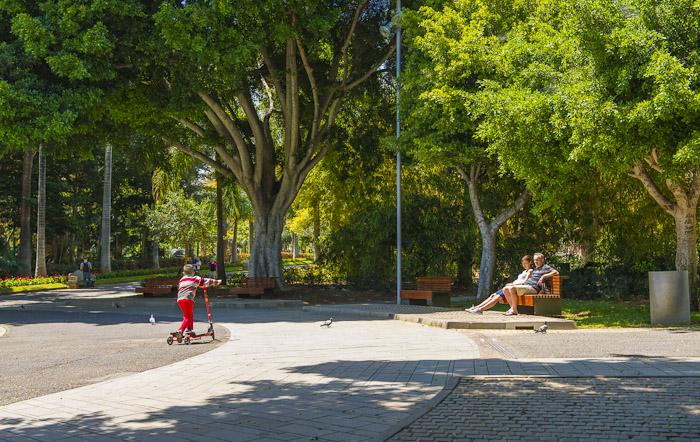 Niño jugando en patinete y padres sentados en un banco tomando el sol en el parque garcia sanabria en Santa Cruz de Tenerife