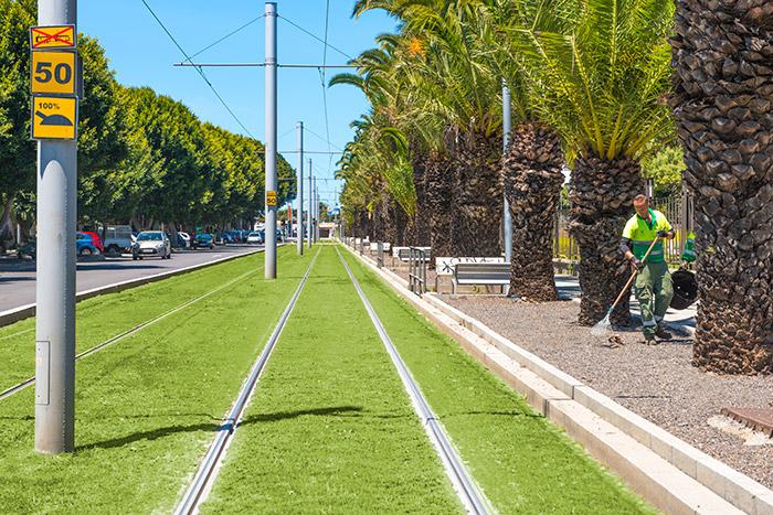 Vias de cesped del tranvia metropolitano de Tenerife juto a la Universidad de San Cristobal de la Laguna