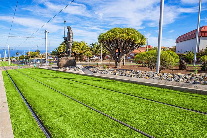 Vias de cesped del tranvia metropolitano de Tenerife en la rotonda del Museo del Cosmos y de la Ciencias