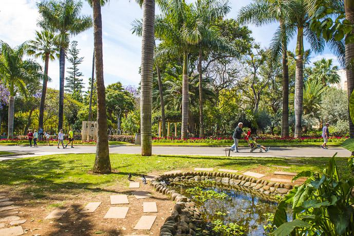 Vista del Parque Garcia Sanabria de Santa Cruz de Tenerife donde se aprecia a familias paseando entre vegetacion del parque