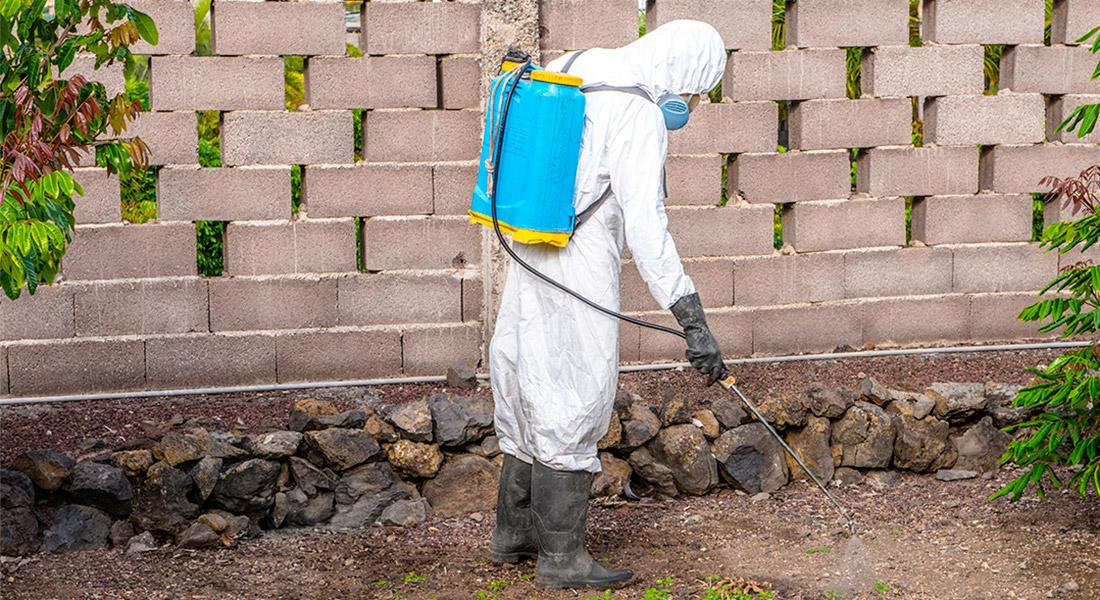 Trabajador de interjardin aplicando tratamiento fitosanitario en una finca de Valle Guerra