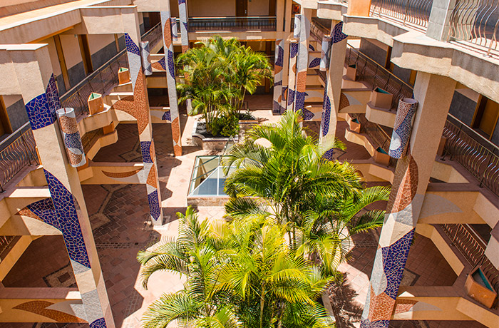 Palmeral del patio interior del Hotel Dunas Paraiso en Los Cristianos, Arona