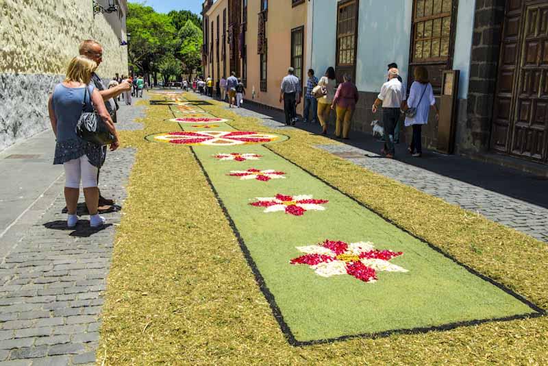 Alfombra De Flores De Interjardin Para El Corpus De La Laguna