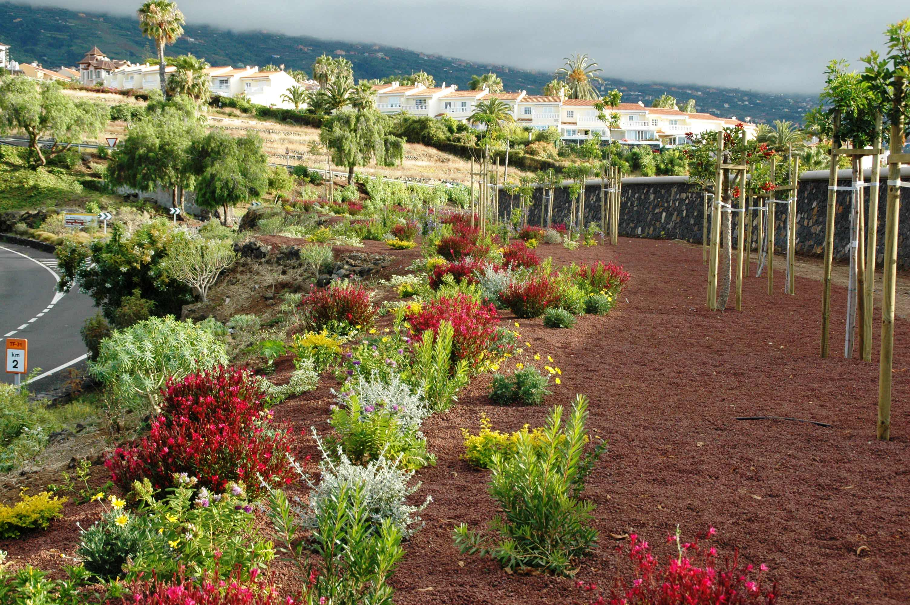 banda de arbustivas + arbolado. Jardinería pública Tenerife